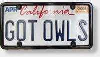Photo: License Plate